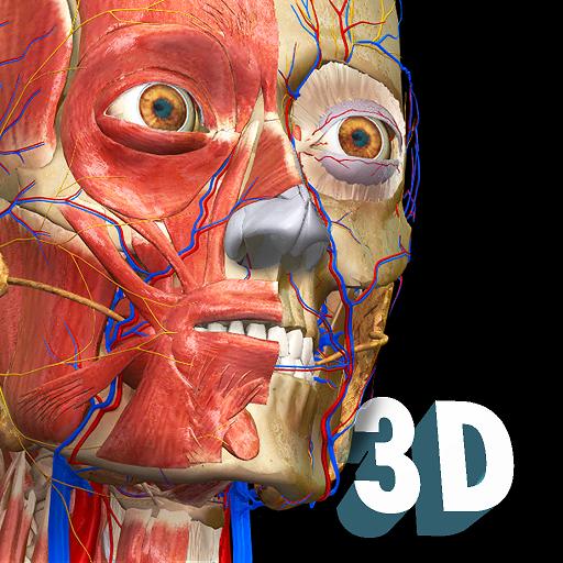 távolítsa el az orr visszérét a visszértágulatok kezelésének legújabb technológiái